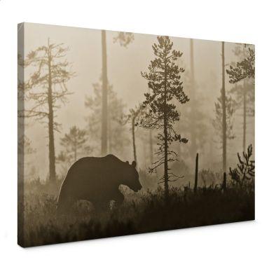 Leinwandbild Ove Linde - Nebel am Morgen
