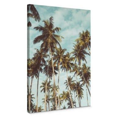 Canvas Print Palm Trees 08