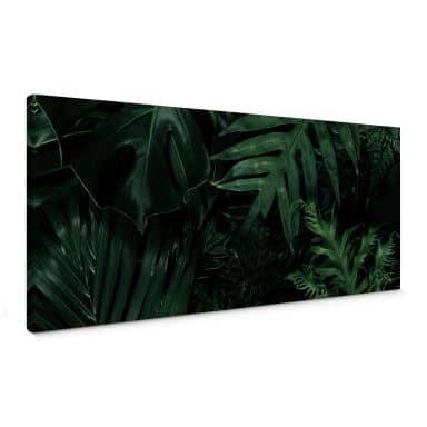 Leinwandbild Dunkelgrüne Dschungelpflanzen - Panorama