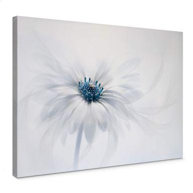 Leinwandbild Parker - Frozen Flower