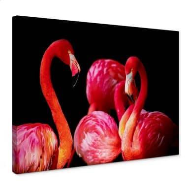 Leinwandbild Pink Flamingo