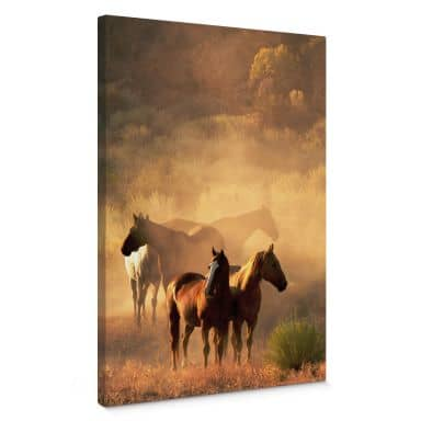 Power of Horses Canvas print