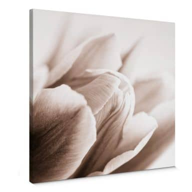 Detail of Tulip Flowers Canvas print square