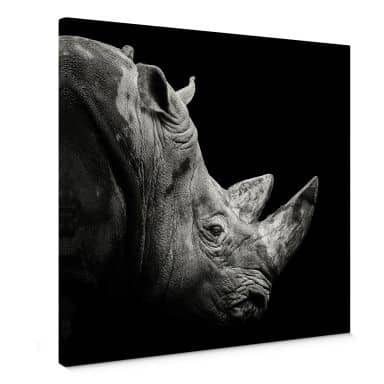 Leinwandbild Meermann - Das Nashorn - Quadratisch