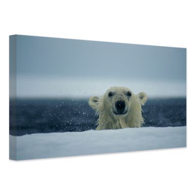 Wandbilder Fur Kinderzimmer Wall Art Wandbild Shop Wall