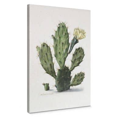 Canvas Saftleven - Cactus