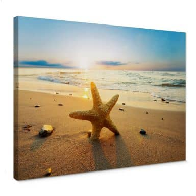 Starfish on the sand Canvas print