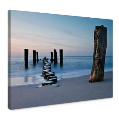 Shore in the Evening Canvas print