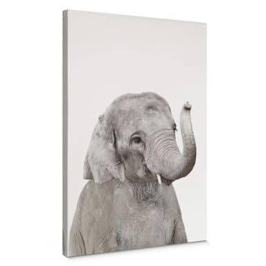 Canvas Sisi & Seb - Baby Elephant