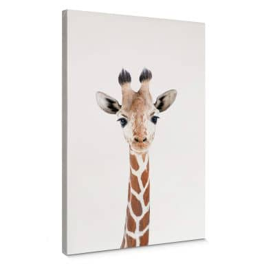 Leinwandbild Sisi & Seb - Baby Giraffe