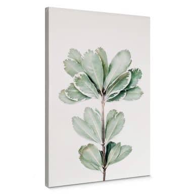 Leinwandbild Sisi & Seb - Botanik