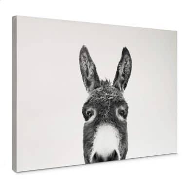 Leinwandbild Sisi & Seb - Der Esel
