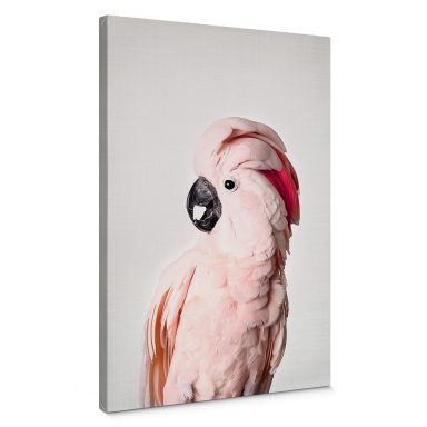 Canvas Sisi & Seb - Pink Cockatoo