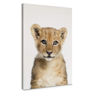 Canvas Sisi & Seb - Baby Lion