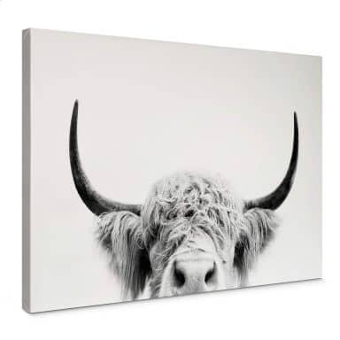 Canvas Sisi & Seb - Bull