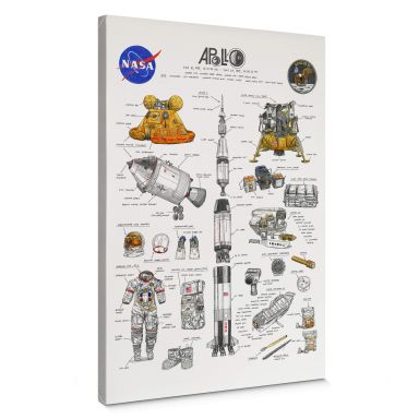 Canvas Sparshott - Apollo 11