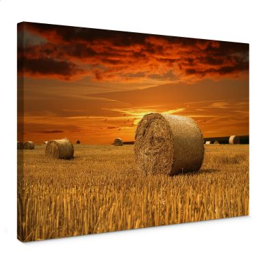 Bales of Straw Canvas print