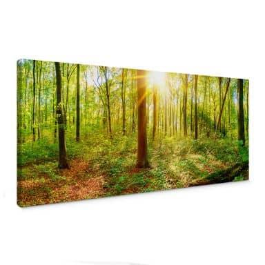 Tableau sur toile - Au cœur de la forêt - Panorama