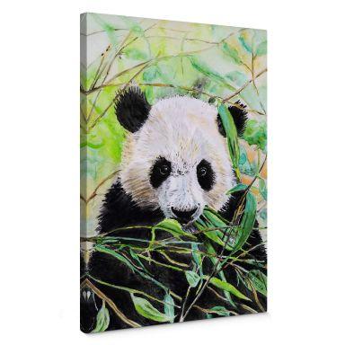 Toetzke - Panda Canvas print