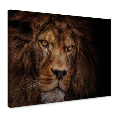 Canvas Vincent - Leeuw