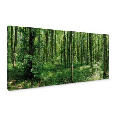 Forest Panorama 01 Canvas print
