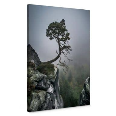 Stampa su tela Wonisch - Forza della natura