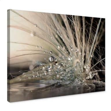 Tableau sur toile Zahirimehr - Histoire d'une goutte d'eau