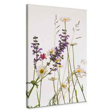 Canvas Print Tan Kadam - Flora Marguerite