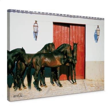 Canvas Edition Boiselle - Paarden in Spanje