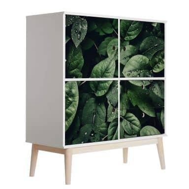 Pellicola per mobili - Foglie verdi