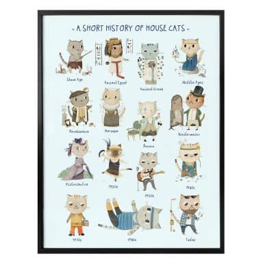 Poster Loske - History of house cats