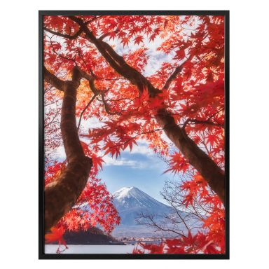 Poster Samejima - Rote Blätter