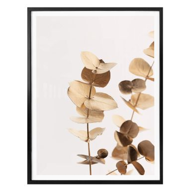 Poster 1X Studio - Goldener Eukalyptus