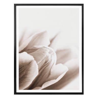 Poster Tulpen in Detail