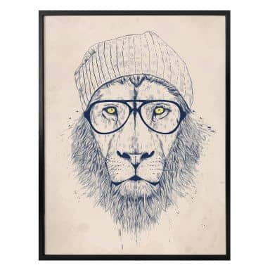 Poster Solti - Lion cool