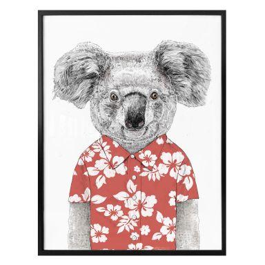 Poster Solti - Koala im Sommer