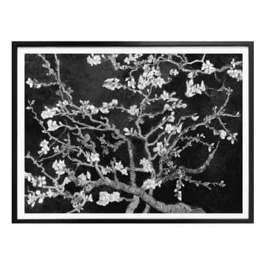 Poster van Gogh - Mandelblüte - schwarz