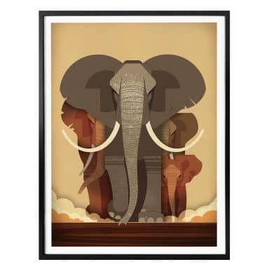 Poster Braun - Olifanten