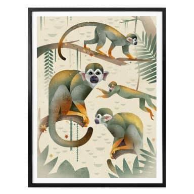 Poster Braun - Aapjes