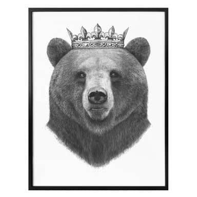 Plakat - Korenkova - King Bear