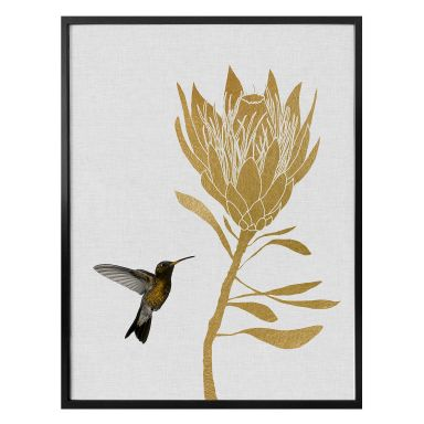 Poster Orara Studio - Hummingbird and Flower