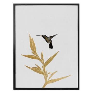 Poster Orara Studio - Hummingbird and Plant