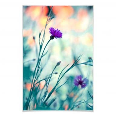 Poster Bravin - Luminous purple
