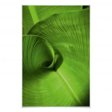 Poster Bananenblatt