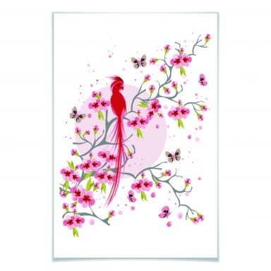Poster Paradiesvogel