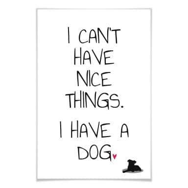Poster I can't have nice Things - Dog