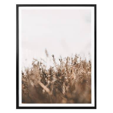 Poster Annie - Meadow Grass