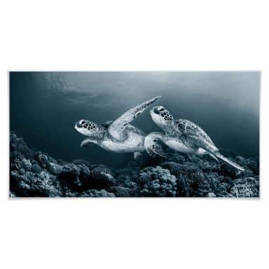 Poster Narchuk - Zwei Schildkröten auf Reisen