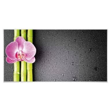 Poster Orchid and Bamboo - Panorama 02