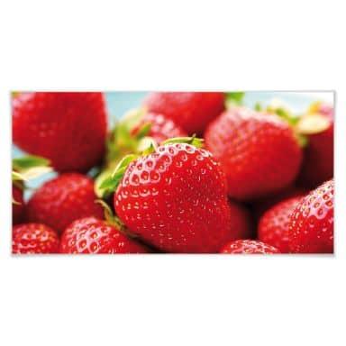 Poster Erdbeeren aus dem Garten - Panorama
